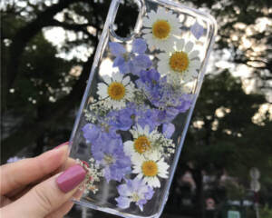 Grosir Case Dried Flower Transparant